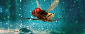 eega-movie-wallpapers-25th-april-2012-32942